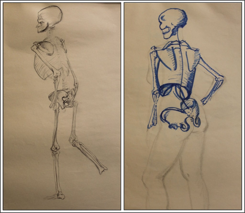 Marie's Drawing of a skeleton and application to life drawing in similar pose