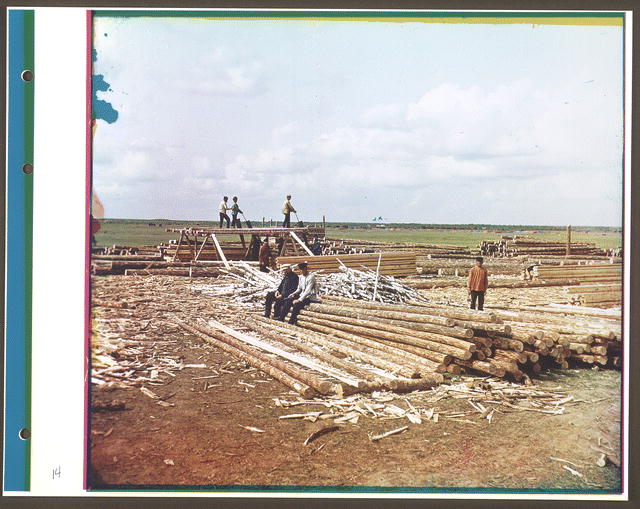 Pit saw timber operation in Ryazan, early 20th century